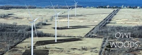 Owl Woods Threatened by Seven Turbines
